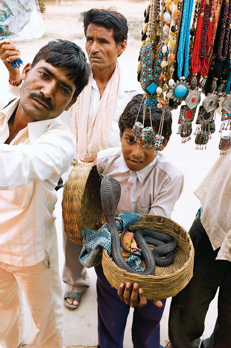 india-chico-con-serpiente