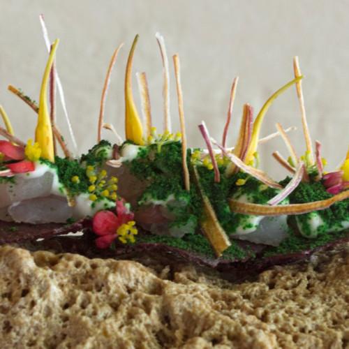 5 restaurantes latinoamericanos donde los platos son obras de arte