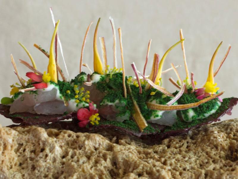 ceviche-de-hierbas-de-Central-Restaurante-en-Lima