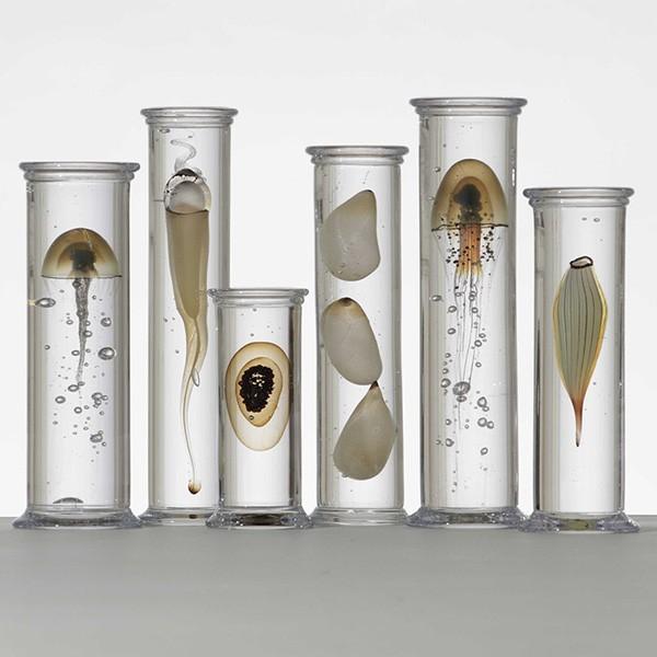Steffen-Dam-marine-objects