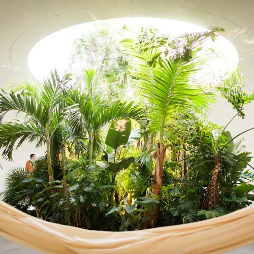 La casa perfecta es una tienda tropical en los Países Bajos