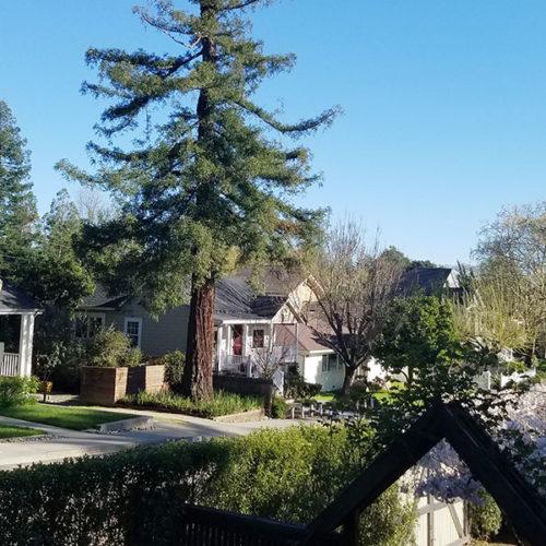 Tres días en Healdsburg te harán desear mudarte a Sonoma