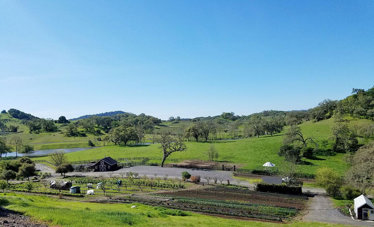 Jordan-winery-farm-land