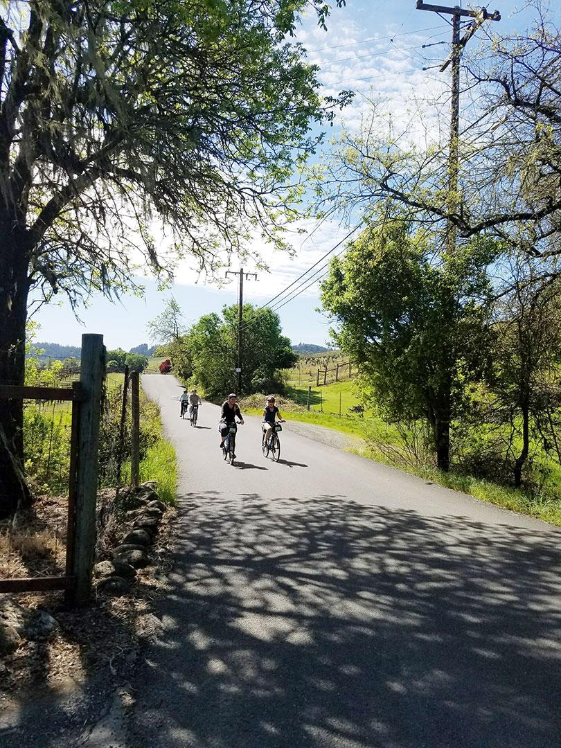Sonoma-bike-rides