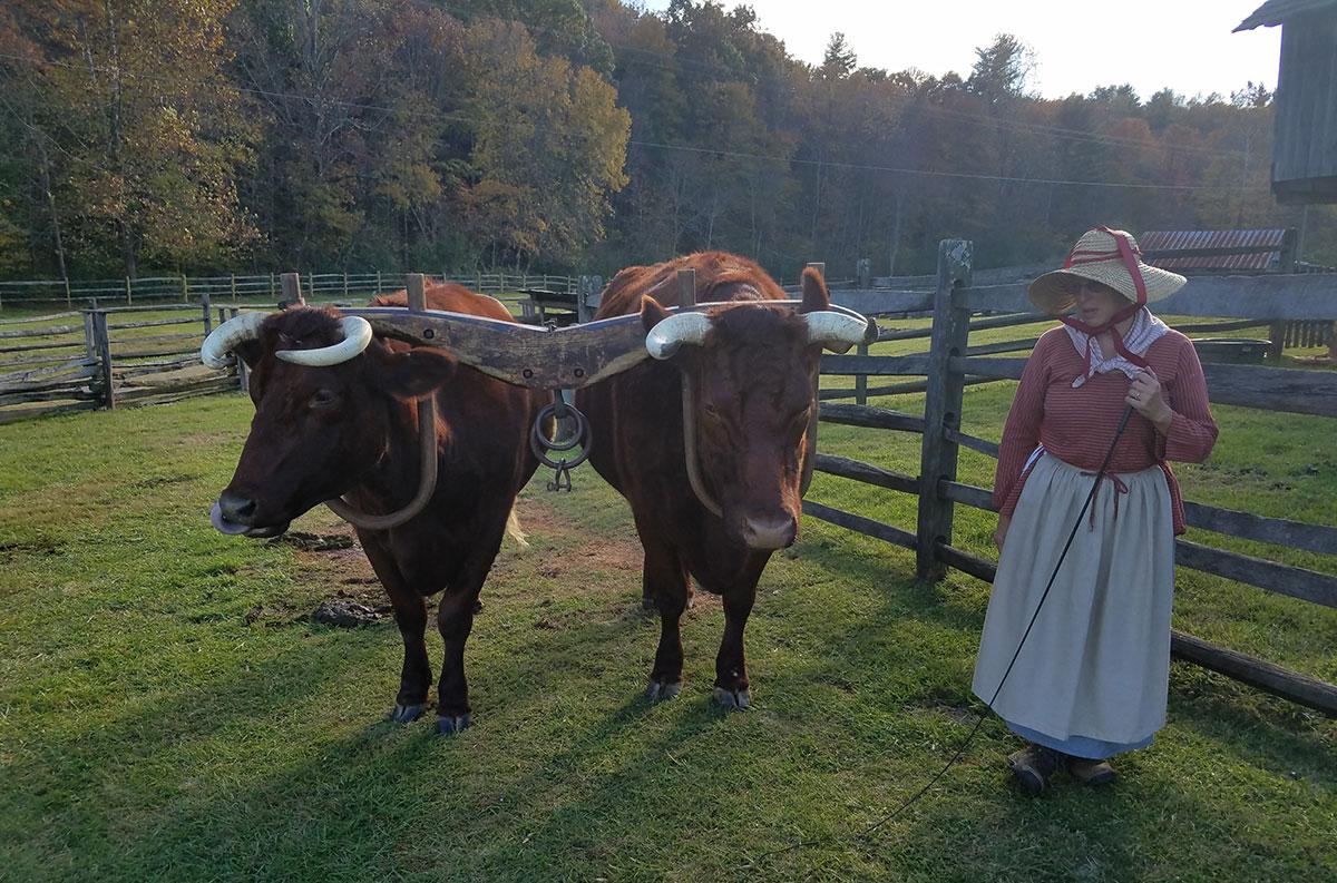 Roanoke-Blue-Ridge-Farm-Museum