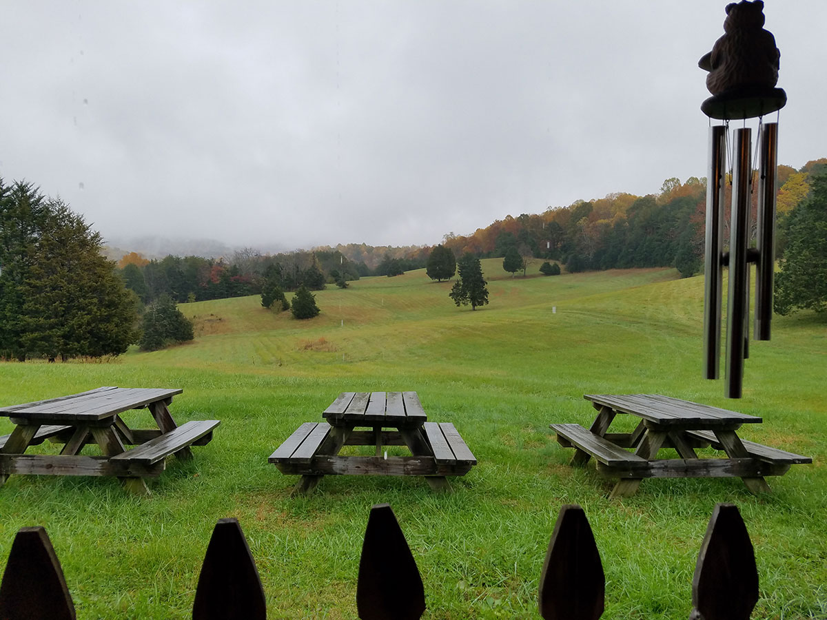 Blue-Ridge Vineyard