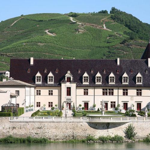 2015, la cosecha perfecta para los vinos del Valle del Rhône