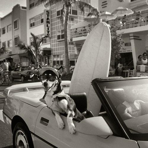 Miami Beach en los noventa