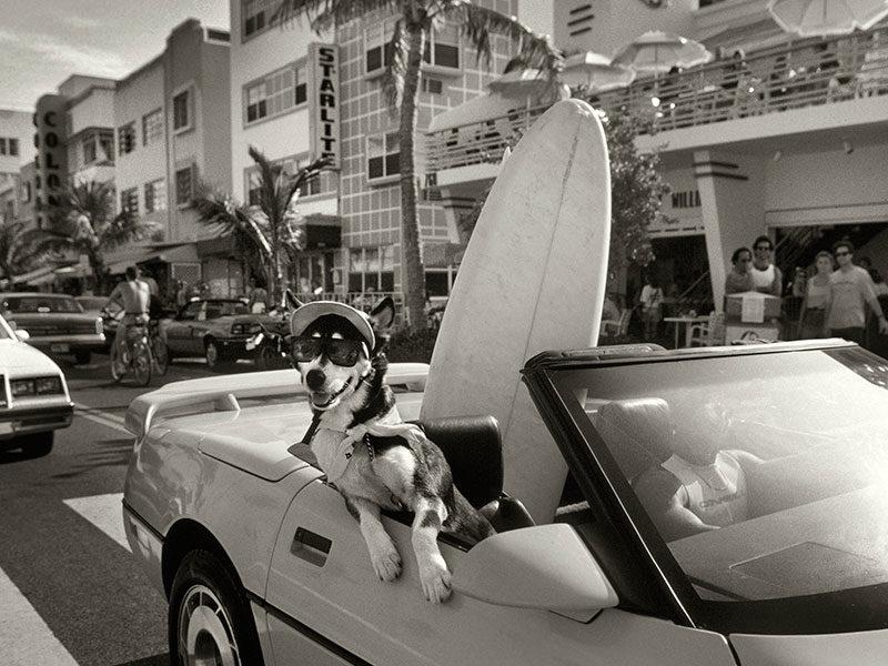 Barry-Lewis-Miami-Beach-1988-1995