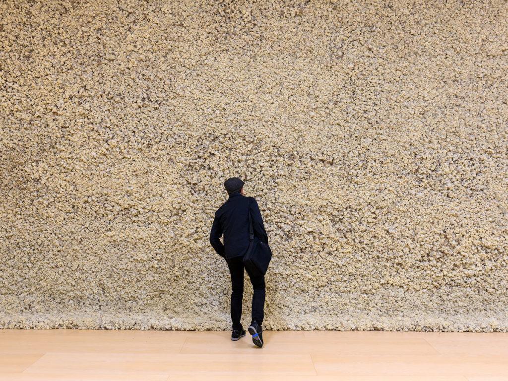 Olafur-Eliasson-(Moss-wall-1994)