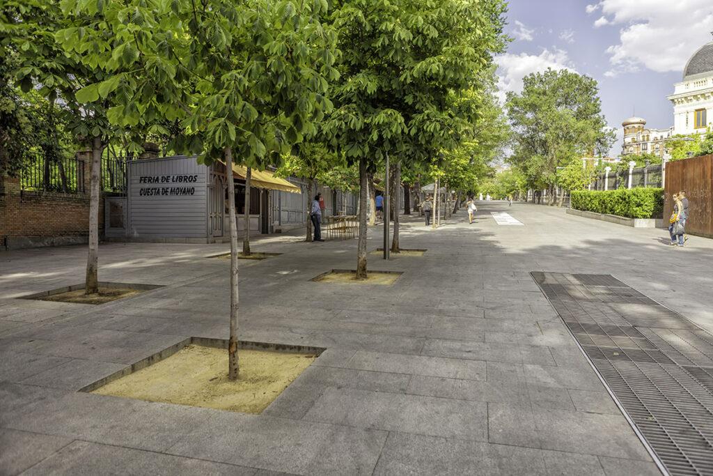 Cuesta-de-Moyano-Alvaro-Lopez-del-Cerro